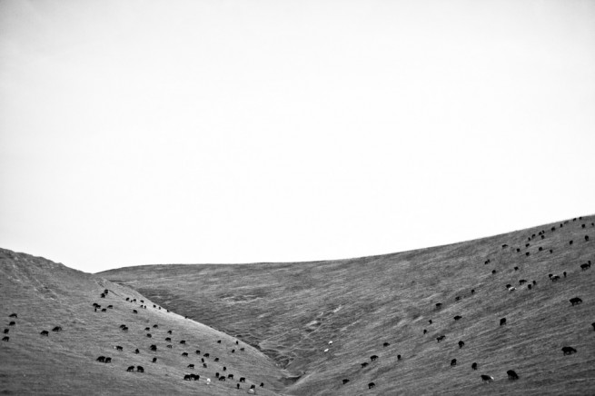 Kyrgyzstan Landscapes BW 06