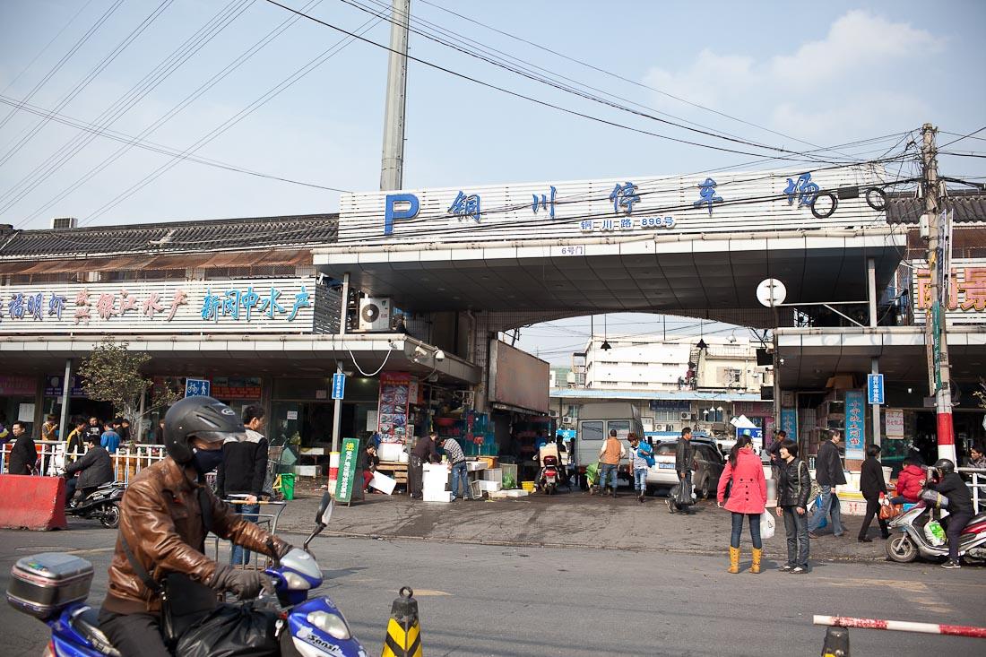 Tongchuan Fish Market 03